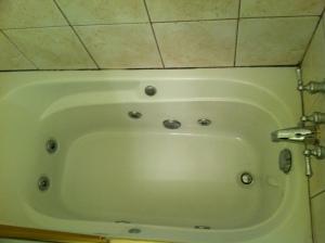 Main Level Jacuzzi Bath